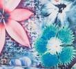 ЦветыАватар