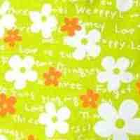 Цветы Салатово Оранжевые