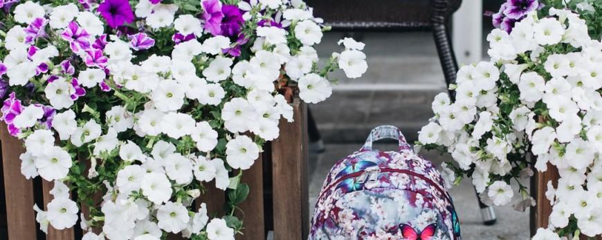 Женские рюкзаки ASGARD в Минске. Модный рюкзак.